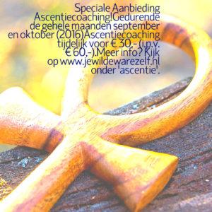 ascentiecoaching aanbieding 5