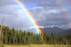 rainbow-brigachtal