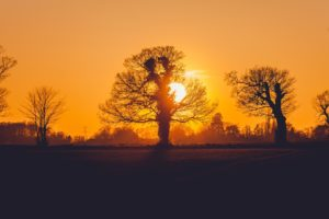 sunset-1669824_960_720